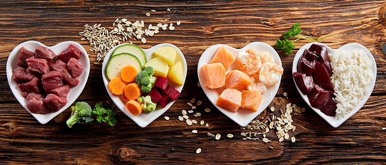 Imagem ilustra diversas porções de comida para representar a tecnologia de alimentos - Qualicorp