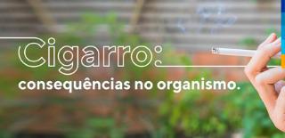 Imagem com fundo verde, com textura de plantas, à frente texto: cigarro: consequências no organismo. Ao lado, dedos da mão segurando um cigarro.